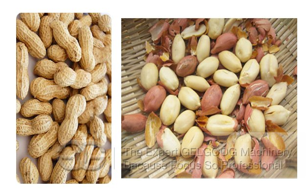 Small Capacity Hot Sale Peanut Roaster Machine